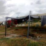 Να δωθούν λύσεις στα προβλήματα των εργαζόμενων στο κέντρο φιλοξενίας μεταναστών Μάνδρας